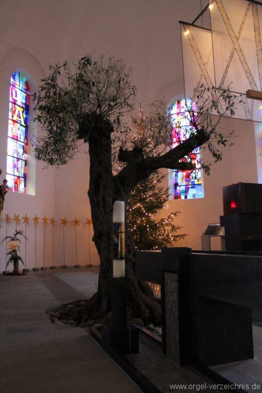 Lingenau Johannes der Täufer Oelbaum